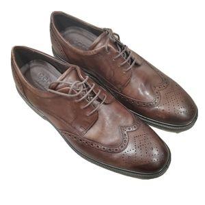 NEW ECCO Lisbon Brogue Tie Oxford Shoes Brown